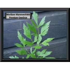 feuilles de Lovage *, 1 kg