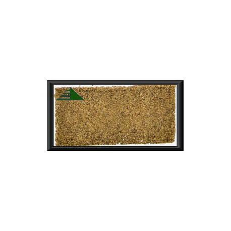 Coriander gemahlen - Koriander, 1 Kg