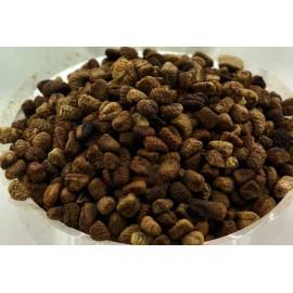 Cardamom Saat ganz - Kardamom, 1 Kg